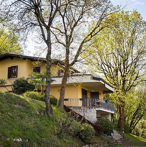 Luxury Villa In Salo Italy With Swimming Pool photos Exterior