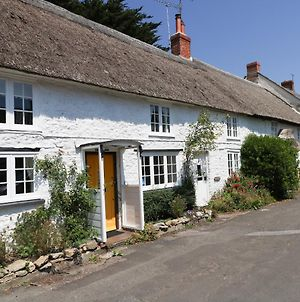 Apple Tree Cottage Burton Bradstock photos Exterior