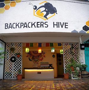 Backpackers Hive photos Exterior
