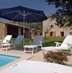 Holiday Home Tamaris With Pool In A Village Strpacici photos Exterior