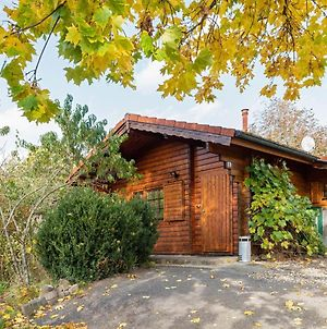 Beautiful Wooden Holiday Home In Hesse With Private Garden And A Large Terrace photos Exterior
