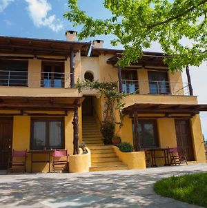 Room In Bb - Hotel Alkifron Pelion photos Exterior