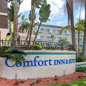 Comfort Inn & Suites San Diego Zoo Seaworld Area photos Exterior