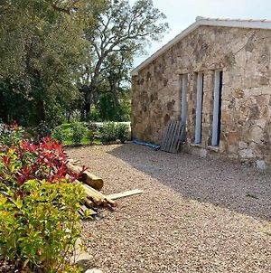 Villa With 2 Bedrooms In Lecci With Wonderful Mountain View Private Pool Enclosed Garden 4 Km From The Beach photos Exterior