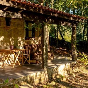 Forest House Casinha Do Carvalhal photos Exterior
