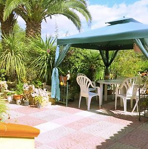 Alghero, Villa Calvia For 8 People With Furnished Garden photos Exterior