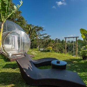 Bubble Hotel Bali Ubud photos Exterior