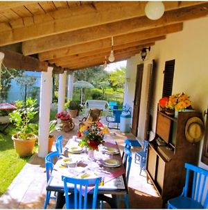 Villa Angela In Alghero, Surrounded By Greenery, For 6-7 People photos Exterior