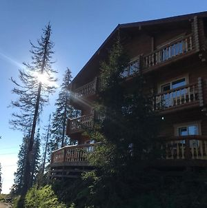 Alpin Eco Chalet & Wellness photos Exterior