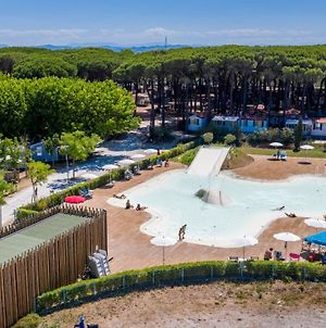Pineta Sul Mare Camping Village photos Exterior