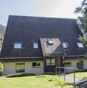 Large Apartment With Balcony In Winterberg-Silbach, Adjacent To A Hiking Trail photos Exterior
