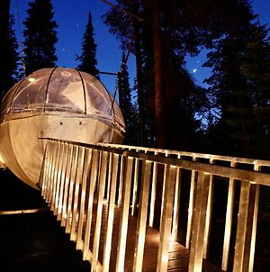 Stanton Creek Treehouse Tent Cocoons - Clear Top photos Exterior