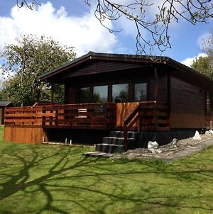 Bluebell Lodge 4 With Hot Tub, Newton Stewart photos Exterior