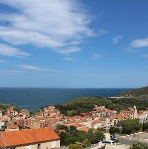 Appartement Port-Vendres, 2 Pieces, 4 Personnes - Fr-1-309-164 photos Exterior