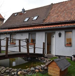 Bright And Cosy Apartment In Meisdorf In The Harz Region With Separate Entrance photos Exterior