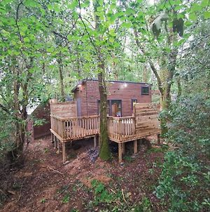 Tiny House-Hot Tub-St Clears-Pembrokeshire-Tenby photos Exterior
