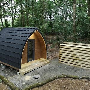 The Pod-Hot Tub-Woodland Lodges-St Clears-Carmarthen photos Exterior
