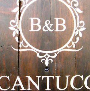 B&B Il Cantuccio photos Exterior