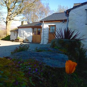 Cae'R Meddyg Farm B&B With Private Annexe photos Exterior