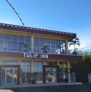 Tulip Inn Tomohon photos Exterior