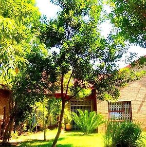 Ankuweni Guest House photos Exterior