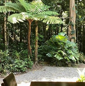 Forest Views Daintree photos Exterior