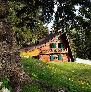 Chalet Alpinka photos Exterior