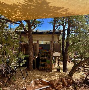 The Chi-Treehouse At Sunny Mellow Eco Villa photos Exterior