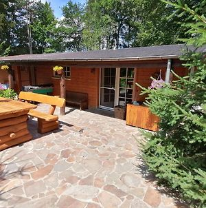 Authentic Chalet In Wibrin With Sauna photos Exterior