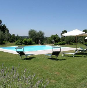 Classic Farmhouse In Sorano With Swimming Pool photos Exterior