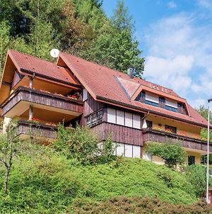 Cozy Apartment In Bad Rippoldsau Near The Forest photos Exterior