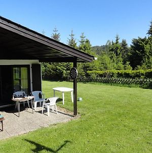 Detached Holiday Home In Willingen-Usseln With Covered Terrace photos Exterior