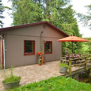 Chalet And Gypsy Caravan In A Green And Peaceful Environment, Near Houffalize photos Exterior
