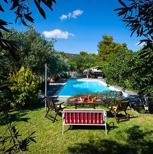 Charming And Peaceful 5Bdr Villa With Pool, 6 Minutes From Eretria photos Exterior
