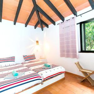 House With One Bedroom In Pedras Del Rei With Shared Pool And Furnished Garden photos Exterior