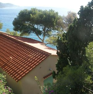 Sea-View Holiday Home In Rayol-Canadel-Sur-Mer With Garden photos Exterior