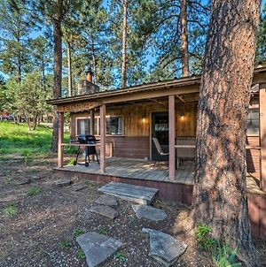 Peace And Privacy In The Woods Less Than 1 Mi To Midtown photos Exterior