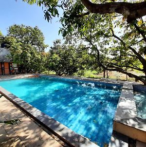 Gir County Resort With Swimming Pool photos Exterior