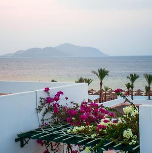Coral Beach Resort Montazah (Adults Only) photos Exterior