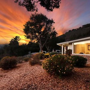 Wine Country Paradise - Private 1-Acre Estate Home photos Exterior