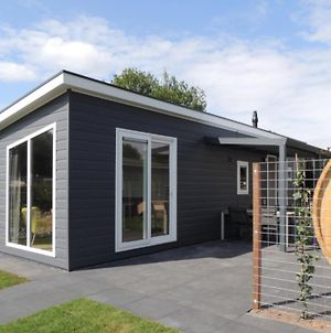 6 Pers. Veluwelodge Xl Met Sauna photos Exterior