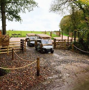 Luxury Safari Lodge Surrounded By Deer!! 'Fallow' photos Exterior