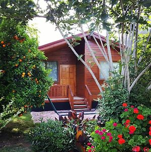 Asya Bungalow photos Exterior