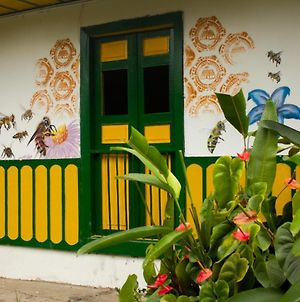 The Plantation House Travellers Hostel photos Exterior