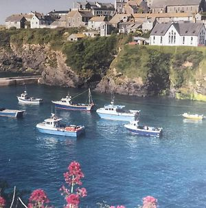 Bay House - Lundy. Port Isaac Dog Friendly Apartment With Sea Views photos Exterior