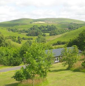 Holiday Lodge In Beautiful Welsh Rolling Hills photos Exterior