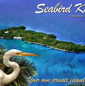 Seabird Key, Private Island, Offshore Florida Keys With Sandy Beach, Tropical Gardens, Boat And Dock. photos Exterior