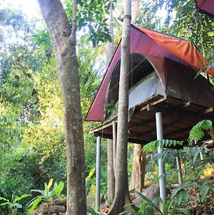 Rainforest Camping Perhentian Island photos Exterior