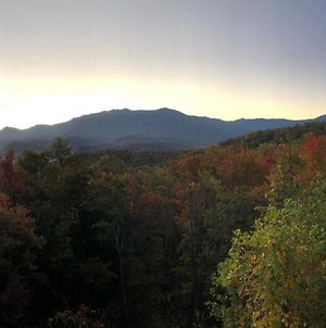 Private Chalet In Gatlinburg, Awesome Views, Work Desk, Wifi, Hot Tub & Dog-Friendly photos Exterior