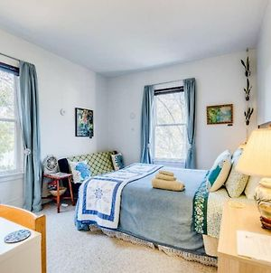 Whole Apartment. Private. Close To Yale/Downtown. A/C, Bikes, Eco-Friendly :) photos Exterior